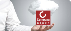 Company Cloud